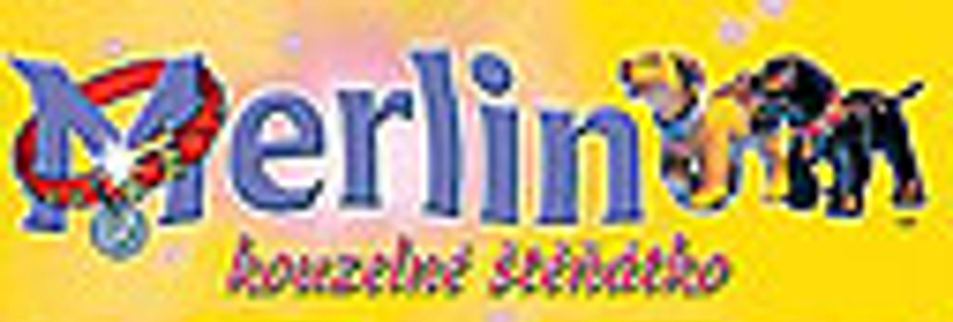 Merlin a čarovné šteniatko